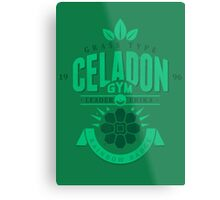 Celadon Gym Metal Print