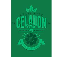 Celadon Gym Photographic Print