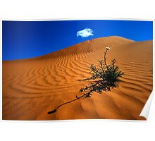 Perry Sand Dune Poster