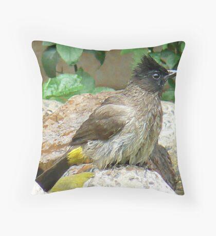 Bulbul  (V) Throw Pillow