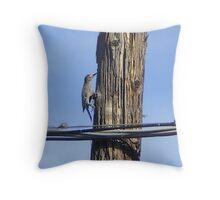 Wood pecker Throw Pillow