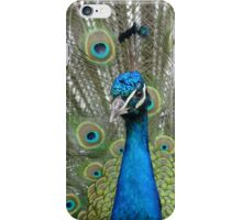 Dressed To Kill #1 iPhone Case/Skin
