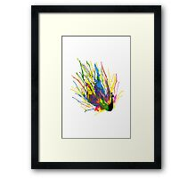 Colorful Peacock Framed Print