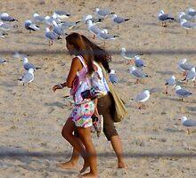 Maroubra Birdlife by pedroski