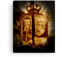 The Penny Jar Canvas Print