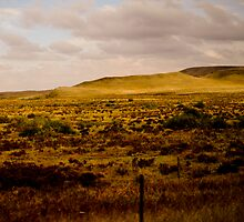 Western plains by Eric Martin