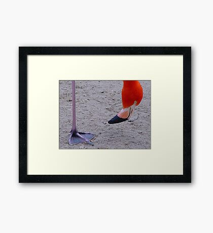 Query Framed Print