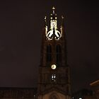 Cathedral At Night by Francis Drake