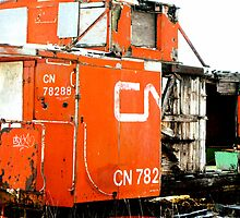 Boxcar by Tracey Bransfield
