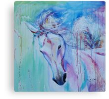 Running in shades of pink and blue Canvas Print