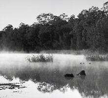 Longneck Lagoon by Simon Hodgson