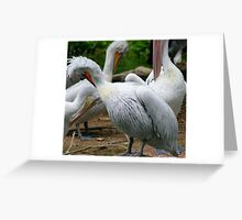 Itch Greeting Card