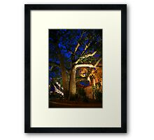 Exotic Tree Framed Print
