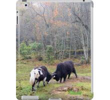 bull fight iPad Case/Skin
