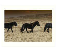 Moorland Ponies Art Print