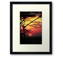 Kenyan Sunset with trees in the foreground Framed Print