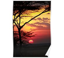 Kenyan Sunset with trees in the foreground Poster