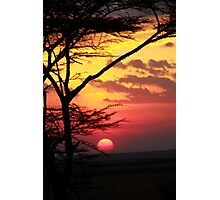 Kenyan Sunset with trees in the foreground Photographic Print