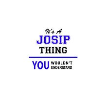It's a JOSIP thing, you wouldn't understand !! by thenamer