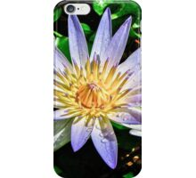 Water Lilly's iPhone Case/Skin