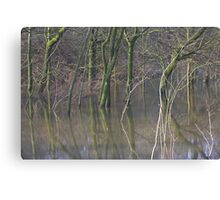 Flooded Woodland Makes a Cool Mirror Image  Canvas Print
