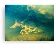 Freshwater river weeds in sunlight under the rippled aqua marine coloured water surface Canvas Print