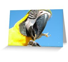 lunch time Greeting Card