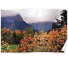 Cascade Fog Poster