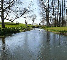 Springtime on a river bank in Norfolk by johnny2sheds