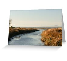 Mouth of Pinole Creek Greeting Card