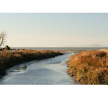 Mouth of Pinole Creek Photographic Print