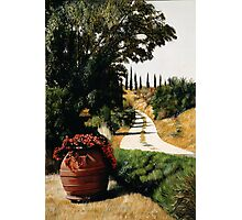 Tuscan Summer Road Photographic Print