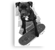 SK8 Staffy Dog black and white Canvas Print