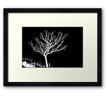 Solitary Tree - White on Black Framed Print