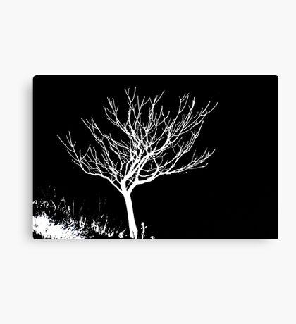 Solitary Tree - White on Black Canvas Print