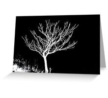 Solitary Tree - White on Black Greeting Card