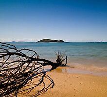 The Horizon by James Ottaway