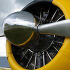 Radial Engine by Michael Wolf