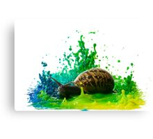 Snail in a paint Sculpture  Canvas Print