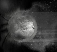 Stellar Nursery by Terry Brock