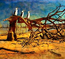 Parched Earth by Sabine Spiesser