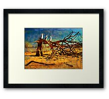 Parched Earth Framed Print