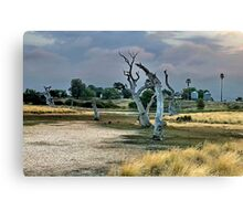 """Dry Parched Land"" Canvas Print"