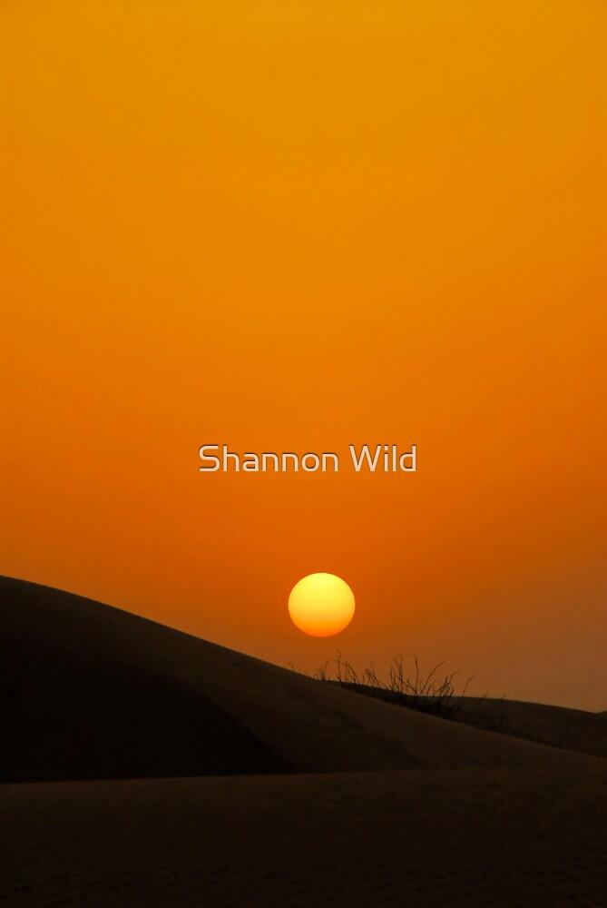 Sunset over dunes of the Dubai Desert Conservation Reserve, UAE by Shannon Benson