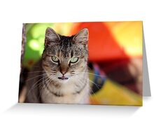 What is She Thinking? Greeting Card