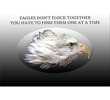 Eagles Don't Flock Together Photographic Print
