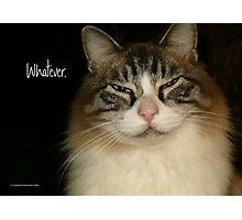 Whatever. Photographic Print