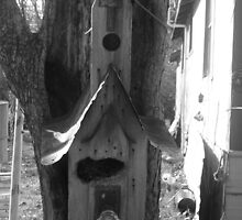 Long lost Bird house by tiffanyloraine