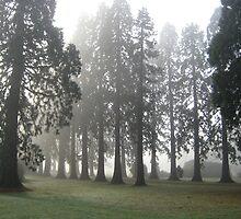 Regimental Trees by Molmon