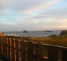 Bandon Sunset on Fence 2  by TimsWorld